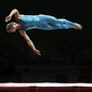 Landesturnfest Braunschweig: The Spirit of Danish Gymnastics