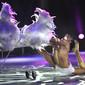 Feuerwerk der Turnkunst 2011: