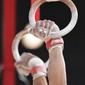 Men's ECh-Montpellier 2012: rings, detail hands