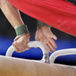 Men's ECh-Montpellier 2012: pommel horse, detail hands